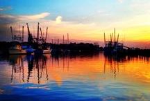 Charleston  / by Lindsay Shields
