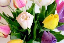 ЦВЕТЫ РУЧНОЙ РАБОТЫ / ЦВЕТЫ СОЗДАЮТСЯ ИЗ ПОЛИМЕРНОЙ САМООТВЕРДЕВАЮЩЕЙ ГЛИНЫ ХОЛОДНЫЙ ФАРФОР. Каждый лепесток повторяет реалистичность живых цветов и тонируются масляными художественными красками после чего цветок собирается во единое произведение состоящее из тычинок пестика лепестков чашелистика и т.д.