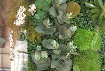 cosas que se hacen con las manos / Es un jardin vertical enmarcado se puede hacer al gusto, en plaza Sgda Familia 1