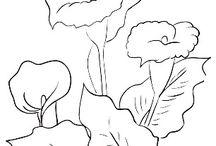 Riscos para pintura flores