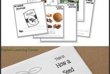 Science - Planting Seed