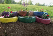 Gardening  / by Tiffany Fromm