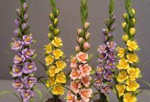lindas flores de eva