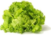 Les salades / Différentes variétés de salades / by Jean-Charles Blondea
