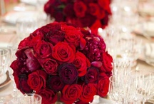 luscious red . . . / weddings indianapolis / by Audrey Wolf Photography