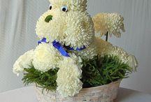 animales florales