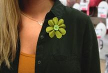 St. Patrick's Day Ideas --- Sunshine Shoppe / Festive St. Patrick's Day irish crafts, recipes, decorations, activities and more!
