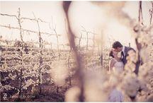 Wedding Venue Cape Winelands