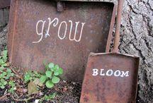 garden rust