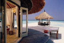 MALDIVES / Romantic vacations Overwater bungalows - Beautiful coral reefs