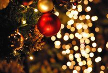 Christmas / Lights, Baubles & Trees / by Wendy McIvor