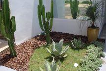 Ante jardín