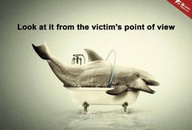 Your ticket ... your fault / buying a ticket for a dolphin or whale show keeps them captive