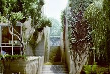 landscape architecture /   / by Madeline Read