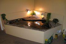teknős lak