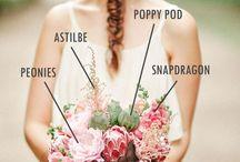 Bouquet c/nombres