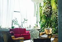 Vertical Gardens / by Magenta G