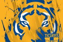 fondos tigres oficial
