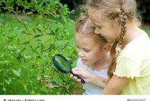Natur und Garten / Natur und Garten umfasst Tipps für die Gartengestaltung, über die Frage nach Kinder und Natur - alles rund um Natur pur für die Familie