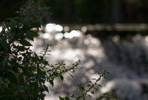 Fotografia Naturaleza / Paisajes y lugares que he visitado y me gustan