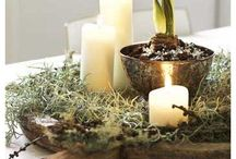Christmas Decorations  / by Tiffany Templar Jones