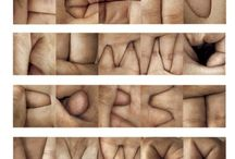 Body Typography
