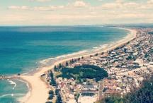 NZ SUMMER