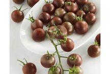 2012 New Varieties! / by Bonnie Plants