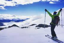 Life beyond The Arctic Circle