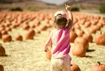 Munchkins and Pumpkins / It's pumpkin season!  See more awesome photos at flickr.com/galleries