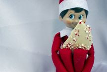 Elf on the Shelf at Cerreta Candy Co.!
