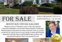 Northern VA Real Estate Flyer