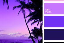 Purple Passion / the color purple