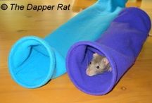Homemade Toys for our Pet Rat / Ideas for my son, whose pet rat needs a lot of stimulation