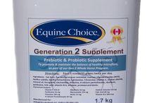 Equine Health