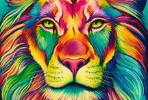 Dibujo A Lapiz De Color