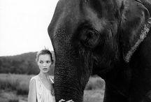 L'inspiration: Kate Moss