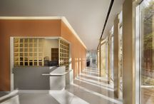 Hospitality: Acoustical Plaster Solutions