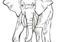 Animals - Free coloring pages