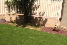 משתלות ירוק ישראלי / משתלות ירוק ישראלי מתחם ענק הנותן את כל הפתרונות לגן ולגינה במקום אחד