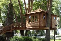 terrazze sull albero