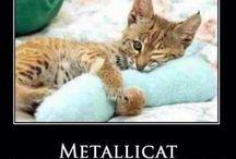 Metal / by Lori Walker