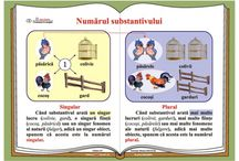 Gramatica (planse)