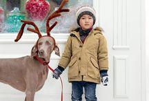 Christmas Cards Inspiration