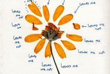 Les Fleurs / by Allison Schiller