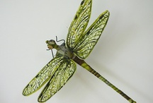 Dragonflies / Inspiration for a custom embroidery design commission.