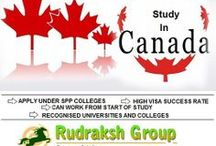 Rudraksh Group Immigration / They provide services to the people who want to settle, study, work or do business in countries like Australia, Canada, New Zealand, UK and USA.