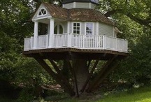 Tree House / by Amy Bennett