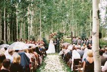 Destination Utah Weddings / 0