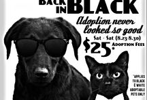 Adoption Promotions